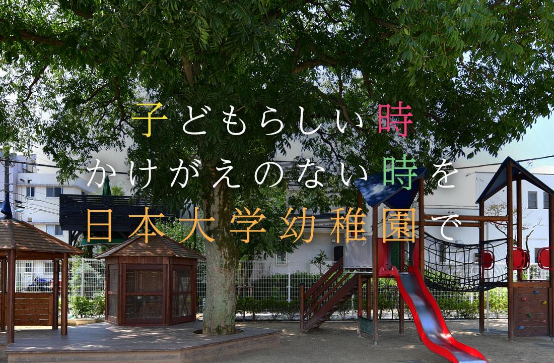 子どもらしい時 かけがえのない時期を 日本大学幼稚園で